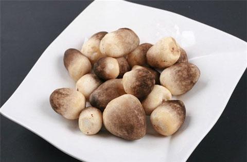 Nấm rơm là một trong số 100 loài nấm có công dụng trong nấu ăn và chữa bệnh.